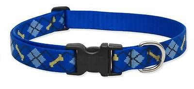"Lupine 1"" wide DAPPER DOG Adjustable Nylon Dog Collar size 16-28"""