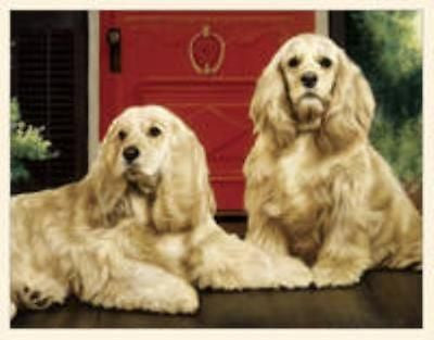 Dog Breed Paper COCKER SPANIEL Boxed Notecards 10 per box CLEARANCE SALE