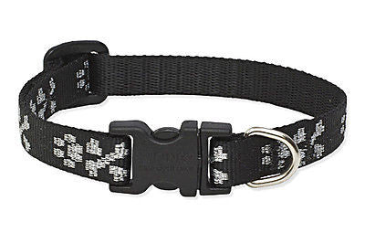 "Lupine 1/2"" wide LIL BLING Adjustable Nylon Dog Collar size 6-9"""