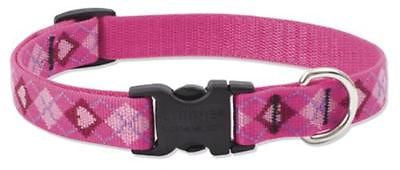 "Lupine 3/4"" wide PUPPY LOVE Adjustable Nylon Dog Collar size 12-20"""