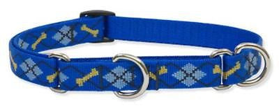 "Lupine 3/4"" wide DAPPER DOG Combo Martingale Adjustable Dog Collar size 10-14"""