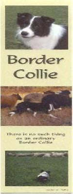 Dog Photos BORDER COLLIE Pet Laminated Paper Bookmark set of 2