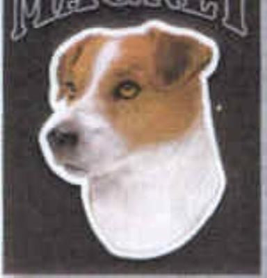 CLEARANCE...Car Magnet JACK RUSSELL TERRIER Dog Die-cut Vinyl