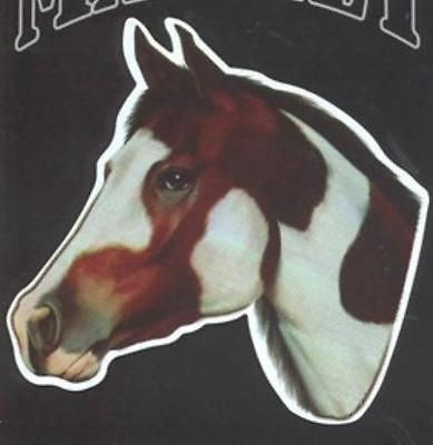 CLEARANCE...Die-cut PAINT HORSE Horse Head Flexible Vinyl Car Magnet