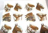 "Ceramic Decal HORSE HEADS 4 Asstd 1 1/2"" Decal 12 pieces"