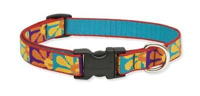 "Lupine 3/4"" wide CRAZY DAISEY Adjustable Nylon Dog Collar size 9-13"""