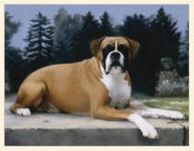 Dog Breed Paper BOXER Boxed Notecards 10 per box CLEARANCE SALE