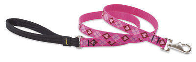"Lupine 3/4"" wide PUPPY LOVE 4 foot Nylon Dog Leash Lead"