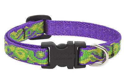 "Lupine 1/2"" wide BIG EASY Adjustable Dog Collar Size 6-9"" RETIRED PATTERN"