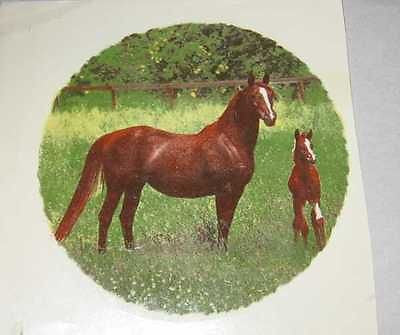 "Ceramic Decal MARE & FOAL in Field Horse 4 1/4"" Decal 3 pieces"