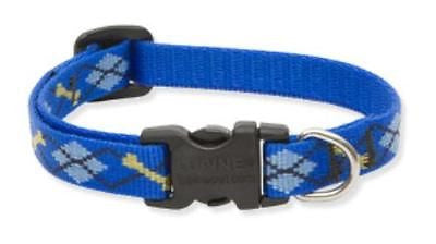 "Lupine 1/2"" wide DAPPER DOG Adjustable Nylon Dog Collar size 8-12"""