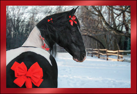 Xmas B/W Paint Horse w/Red Bow Holiday Cards 10 per box made in USA