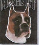 Car Magnet Die-cut BOXER Dog Breed discontinued CLEARANCE