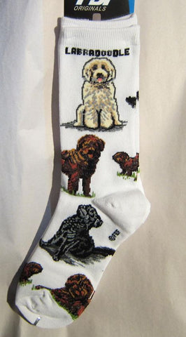 Adult Socks LABRADOODLE Poses Fashion Footwear Dog Socks Size Medium 6-11