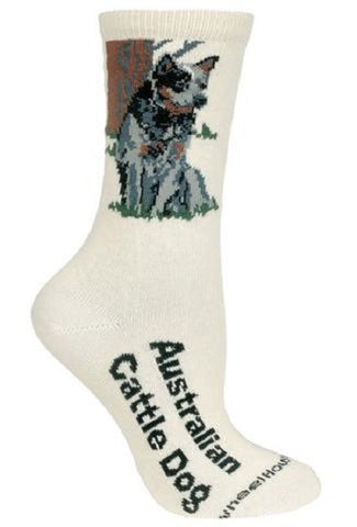 Adult Size Medium AUSTRALIAN CATTLE DOG Adult Socks/Natural Made in USA