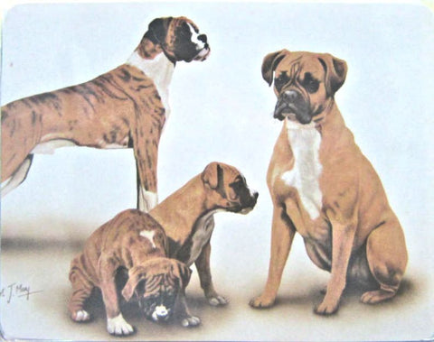 Retired Dog Breed BOXER FAMILY Vinyl Softcover Address Book by Robert May