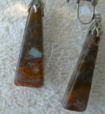 Picture Jasper Dangle Screw On or Wire Earrings Jewelry