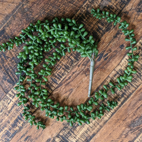 Faux Necklace Succulent