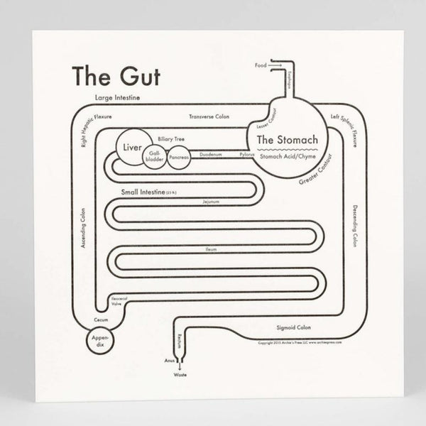 The Gut Print
