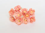 10 Pcs Mulberry Paper Flowers  1-2cm Cherry Blossoms - Peach