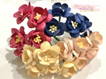 20 Pcs Mulberry Paper Flowers - 2cm Cherry Blossoms - Winter Warmer Tones