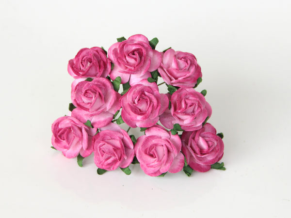 10 Pcs - Mulberry Paper Flowers - 2cm Rounded Petal Roses - 2 tones Hot Pink