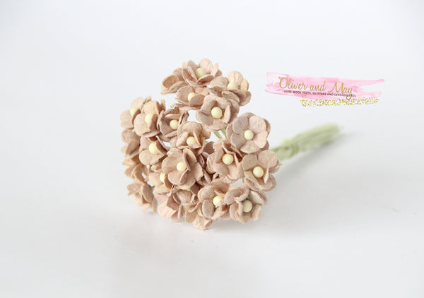 Bulk 50 Pack - Mulberry Paper Flowers - Mini 1cm Cherry Blossoms - Brown Beige