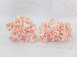 10 Pcs Mulberry Paper Flowers  1-2cm Cherry Blossoms - Blush