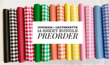 PREORDER Gingham + Matching Leatherette Fabric Felt Sheets - 14 Sheet Bundle