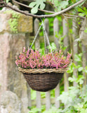 Plant Hanger, Ceiling Basket Pot, Indoor Outdoor, Patio Deck, Hanging Flower Pot, Balcony Ceiling, Hanging Pot