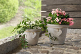 Planter Flower Pot, Over-head,