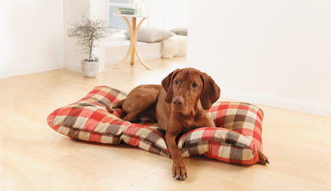 Pet Pad Cat, Dog Bed, Dog Blanket, Pet Cushion, Dog Cat Bed, Soft Warm Sleep Mat, Soft Warm Pet, Polyester Cotton Blanket