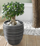 Small Planting Pot, Black and Gray Circle Design, Garden Pots, Indoor Plant Pots, Flower Holder Pot, Garden and Home Decoration, Indoor Outdoor