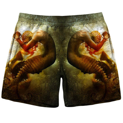 Image of Shark Shorts