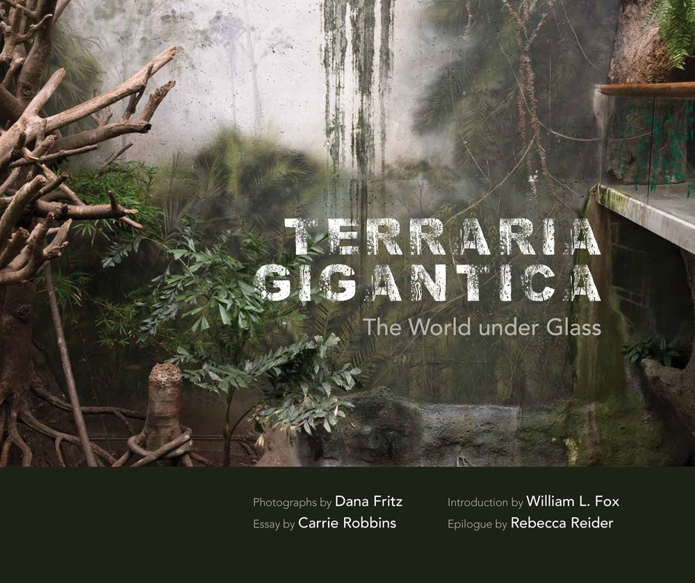 Terraria Gigantica: The World under Glass | Photographs by Dana Fritz