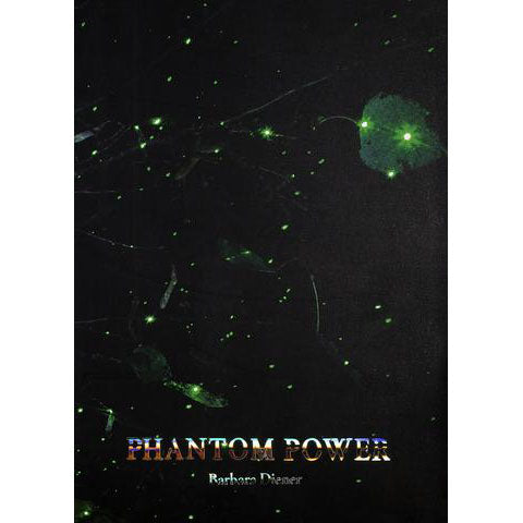 Phantom Power | Photographs by Barbara Diener