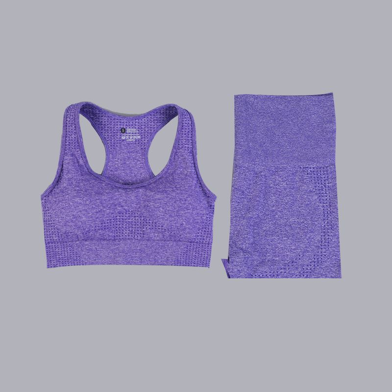 The Minimalist Basic Seamless High-Waisted Yoga Gym Workout Shorts T-Shirt Crop Top & Sports Bra Yoga Sets AJISSI Sportwear Store Purple Grape Sports Bra & Short Shorts Set (2 pcs) S