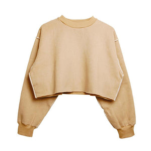 The Only Basic Autumn Winter Sweaters for Women Hoodies & Sweatshirts StreetwearX Store Apricot S