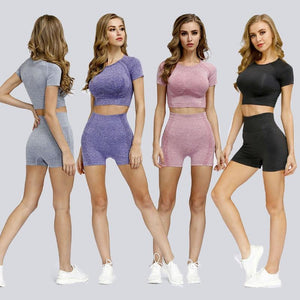 The Minimalist Basic Seamless High-Waisted Yoga Gym Workout Shorts T-Shirt Crop Top & Sports Bra Yoga Sets AJISSI Sportwear Store
