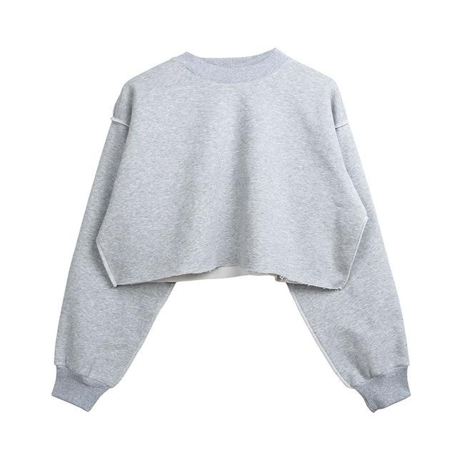 The Only Basic Autumn Winter Sweaters for Women Hoodies & Sweatshirts StreetwearX Store Light Gray S