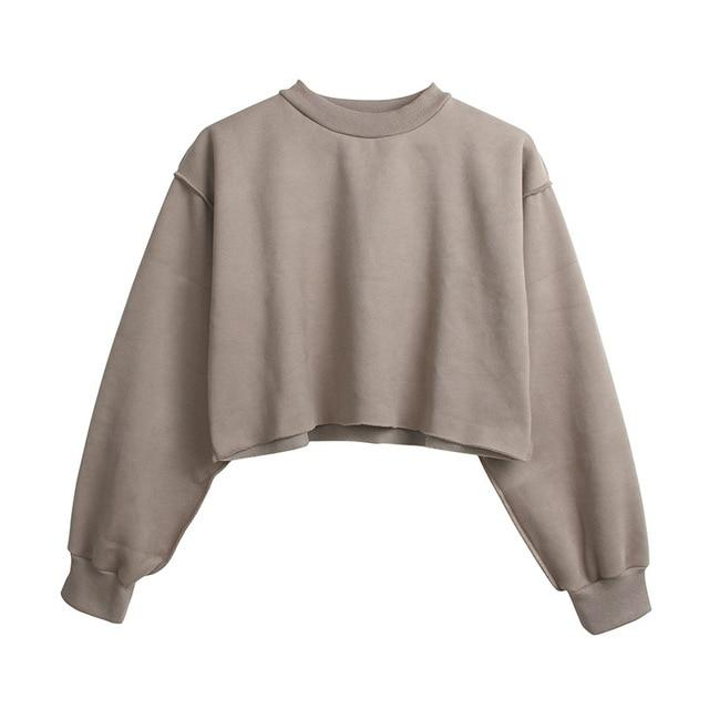 The Only Basic Autumn Winter Sweaters for Women Hoodies & Sweatshirts StreetwearX Store Gray S