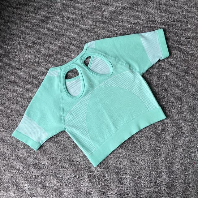 The Yogi Biker Chick Seamless Peek-A-Boo Crop Top T-Shirt and High-Waisted Shorts Yoga Sets AJISSI Sportwear Store Aquamarine Peppermint Green Top (1 pcs) S