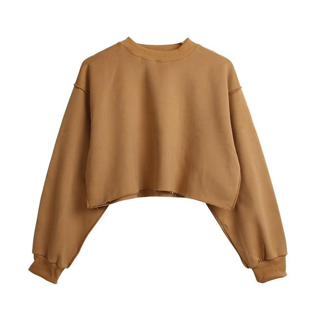 The Only Basic Autumn Winter Sweaters for Women Hoodies & Sweatshirts StreetwearX Store Brown S