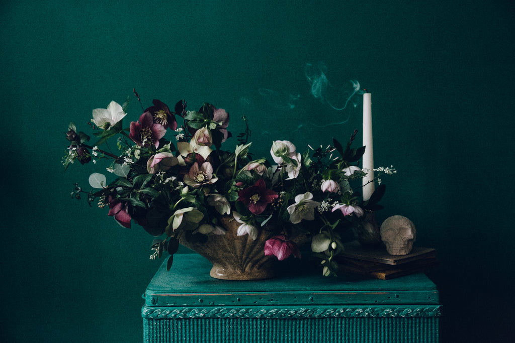 Anna Potter hellebores in teal by India Hobson for Design Sponge