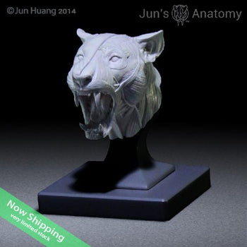 "Lion Anatomy Model open-mouth ""Roar"" head"