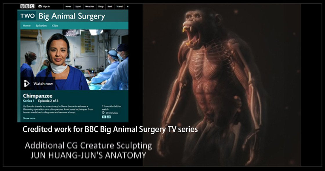 BBC - Big Animal Sugery TV series