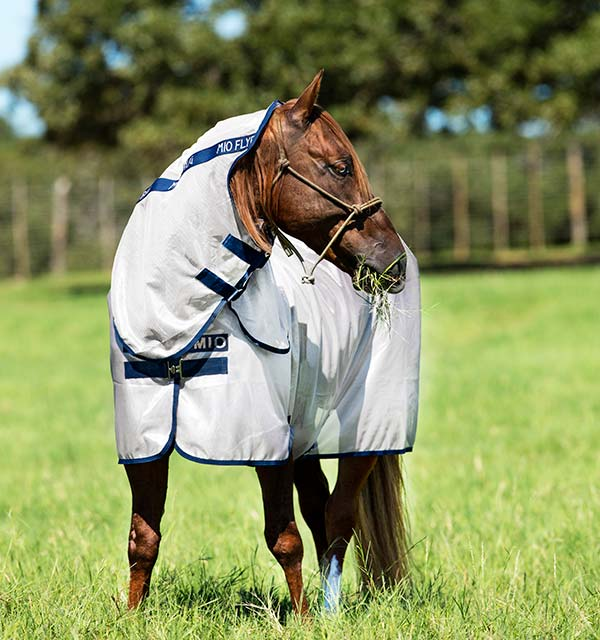 Mio by Horseware Fly Sheet