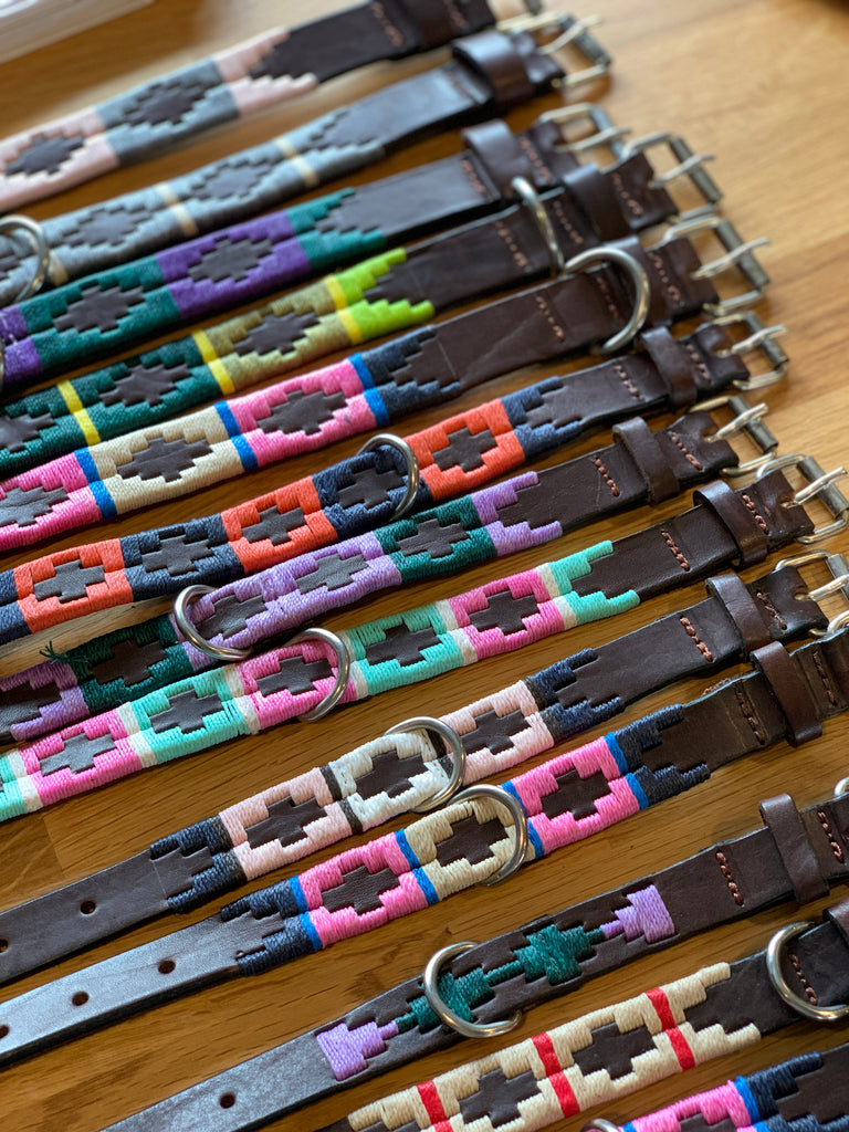 Leather Embellished Dog Collars
