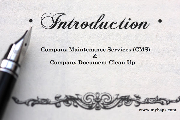 Offering Company Document Clean-up
