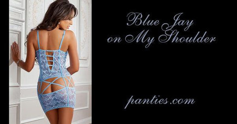 Blue Jay on my Shoulder Chemise